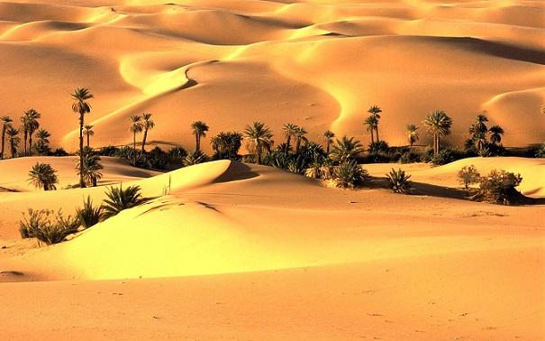 Thar Desert1