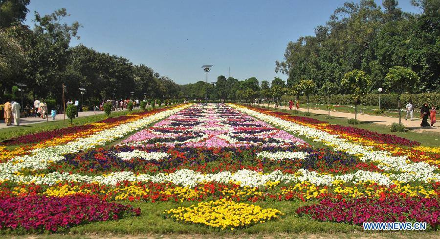 13 - Beautiful Display of Flowers in Lahore