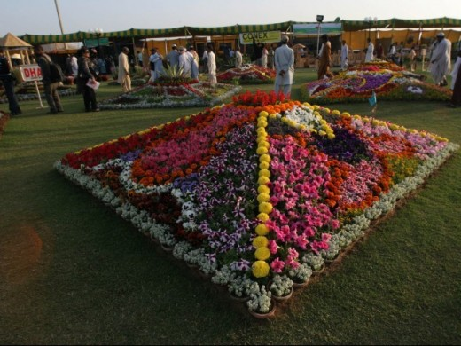21 - Flowers During a Flower Exhibition in Karachi