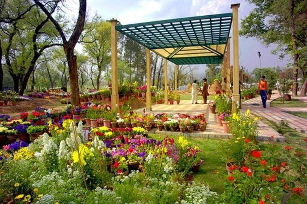 9 - Rose and Jasmine Garden Islamabad