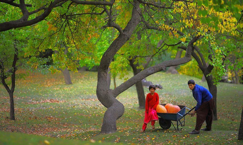 1 - Royal Garden Hunza
