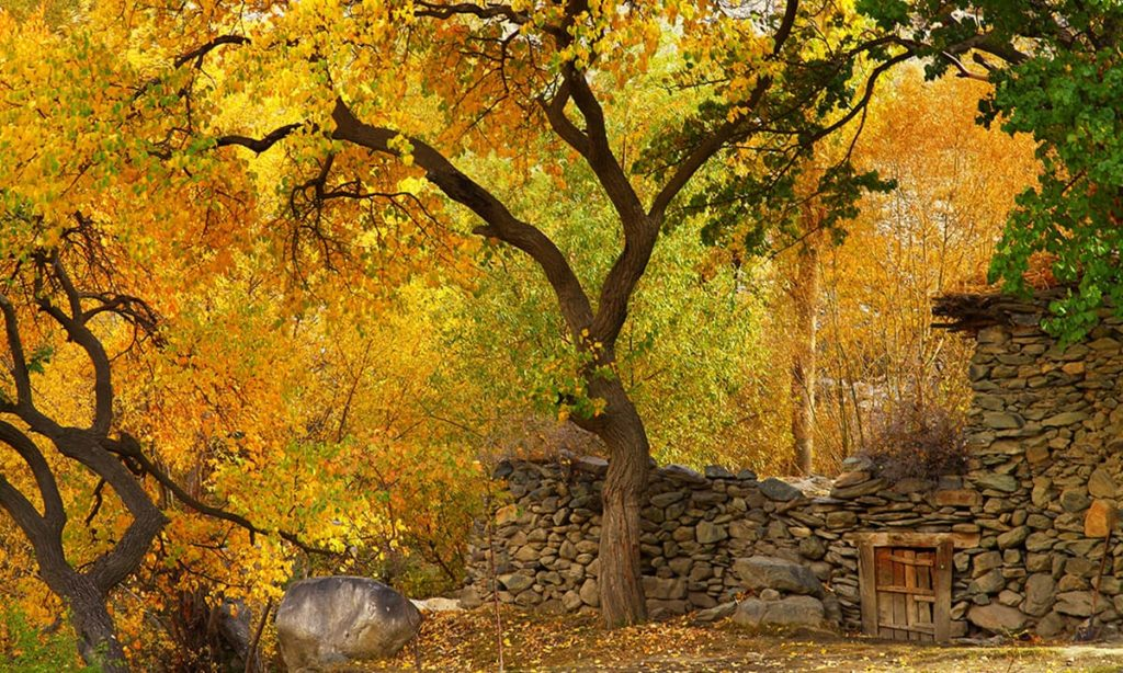 10 - Autumn in Hunza Valley