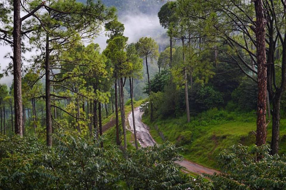 17 - Murree Hills present wonderful walking and hiking opportunities
