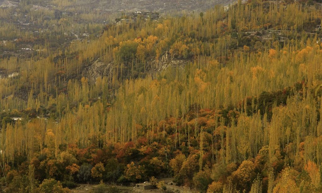 2 - Autumn in Hunza Valley
