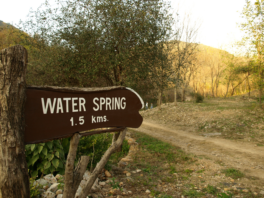 4 - water spring