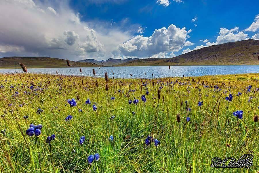 19 - Sheosar Lake - Deosai - Syed Mehdi Bukhari