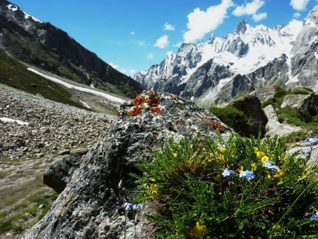 24 - Trekking Trail to Gondogoro Peak from Hushe Valley