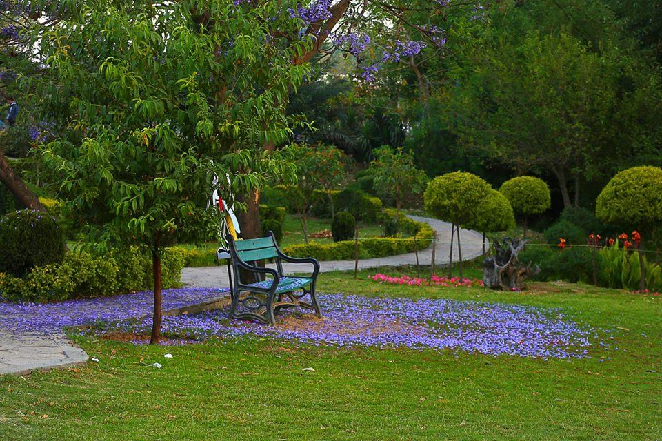 28 - Ayub Park - Rawalpindi 1