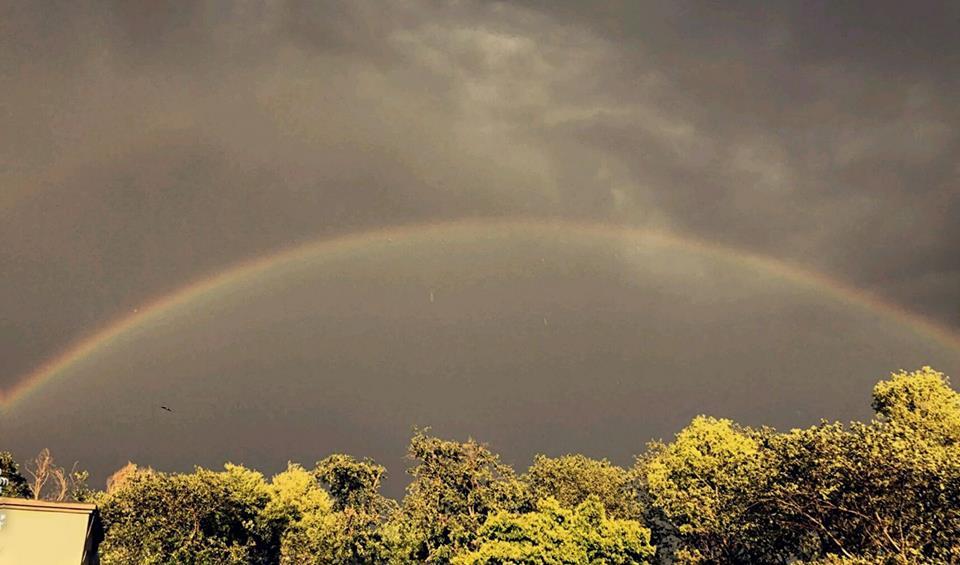 7 - Rainbow - Mansoor Aziz Qureshi