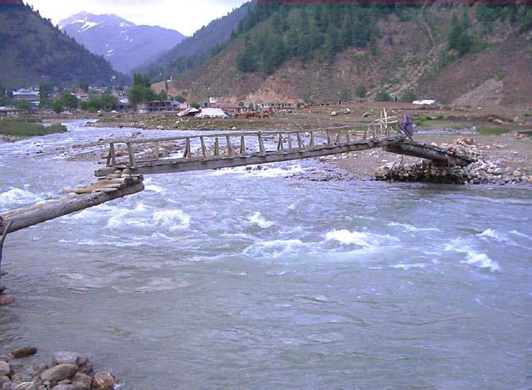 1 - Tarzan Bridge