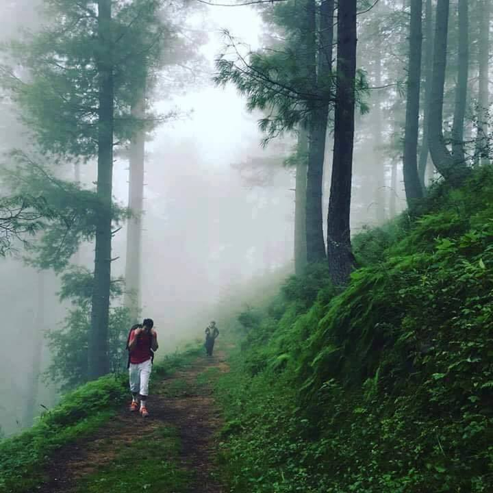 18 - Nathiagali Hiking Track