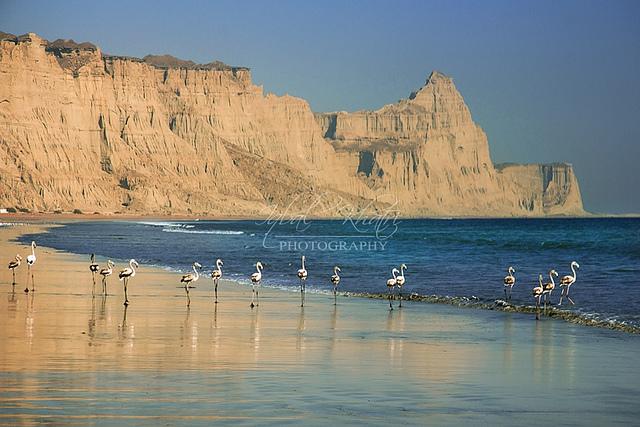 5 - Gawadar Harbor - Balochistan