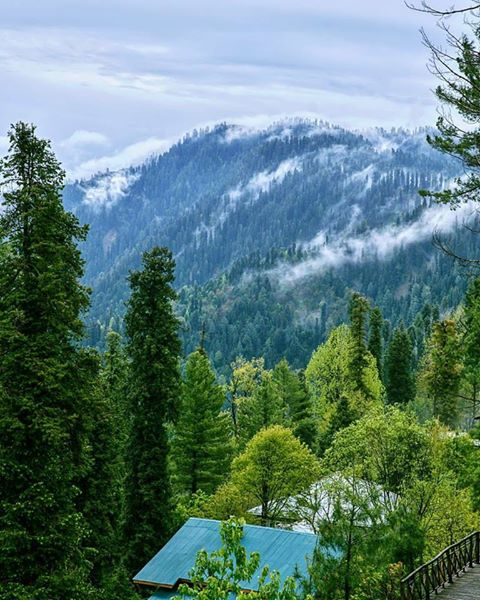 6 - Green Retreat Nathiagali
