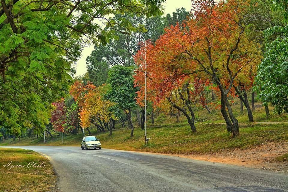 7 - Ataturk Avenue - Islamabad