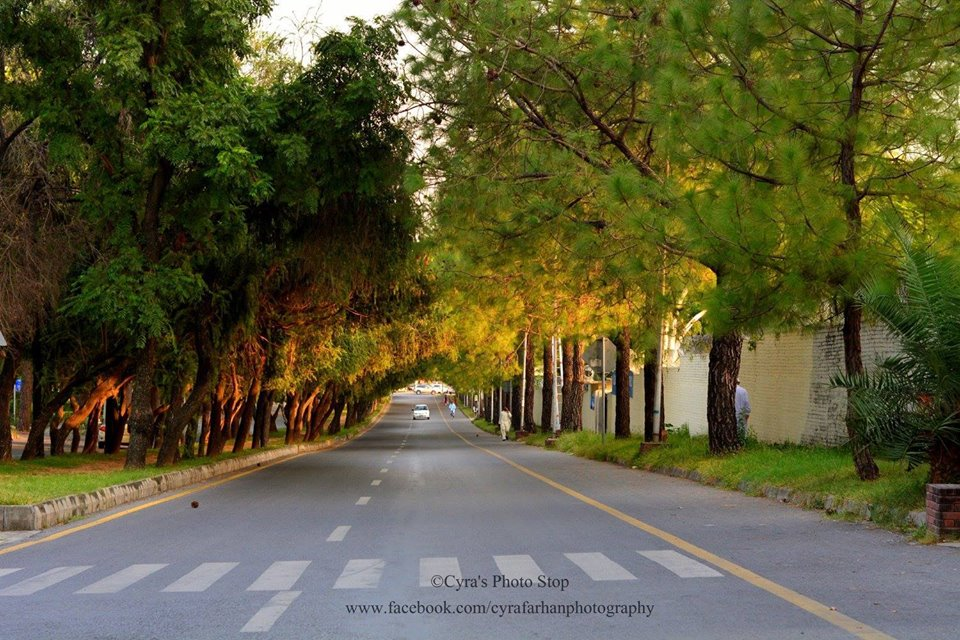 8 - HIll Road - F-6 - Islamabad