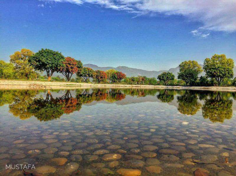 14 - Pond in Fatima Jinnah Park Islamabad - Photo Credits - Mustafa