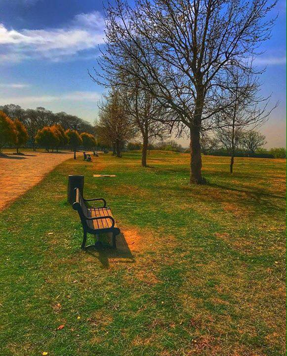 21 - Fatima Jinnah Park Bench