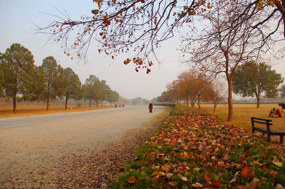 3 - Fatima Jinnah Park Autumn
